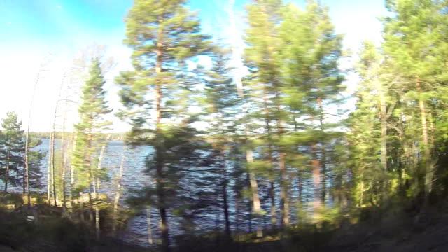 Traveling by train across Sweden video