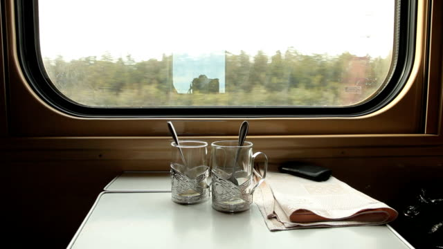 Traveling by ukrainian train video