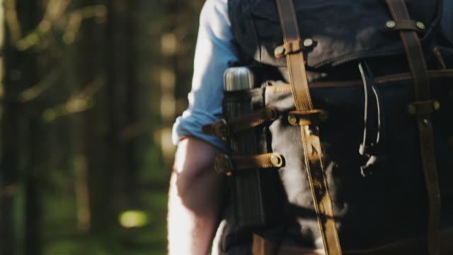 traveling man vandring genom en tallskog på en höst dag - swedish nature bildbanksvideor och videomaterial från bakom kulisserna