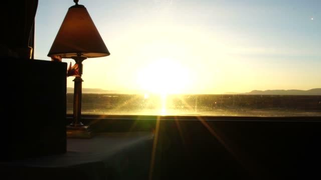 traveling on a luxury train - дикая растительность стоковые видео и кадры b-roll