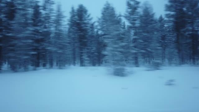 vidéos et rushes de voyage sur la route pendant l'hiver visualisation de l'intérieur de la fenêtre de la voiture par temps couvert - vue latérale
