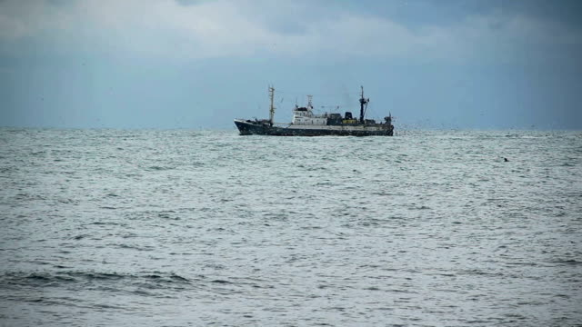 trawler on the high seas - fishing stock videos and b-roll footage