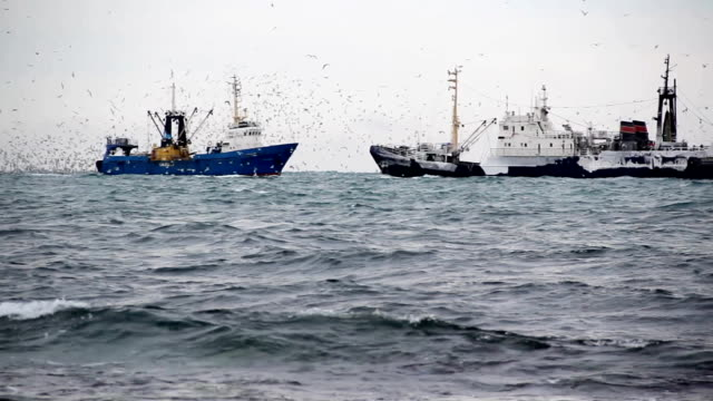 trawlers nel mare del nord - fishing video stock e b–roll