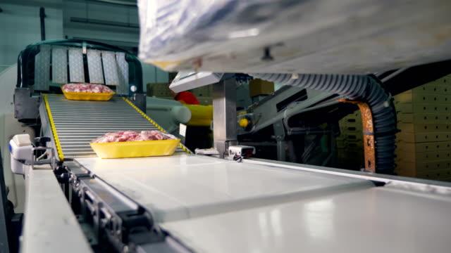 tepsiler çeşitli etli sarma odası etiketleme için bırakın. - gıda ve i̇çecek sanayi stok videoları ve detay görüntü çekimi