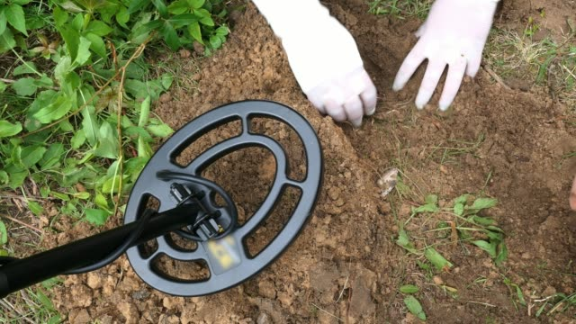 treasure hunters using metal detector and gloves - archeologia video stock e b–roll