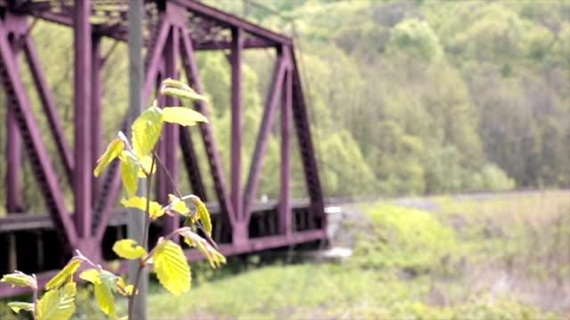 tree and railway bridge tree and railway bridge focus puller intercity stock videos & royalty-free footage