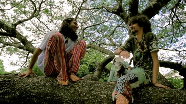 albero di chat - hippy video stock e b–roll