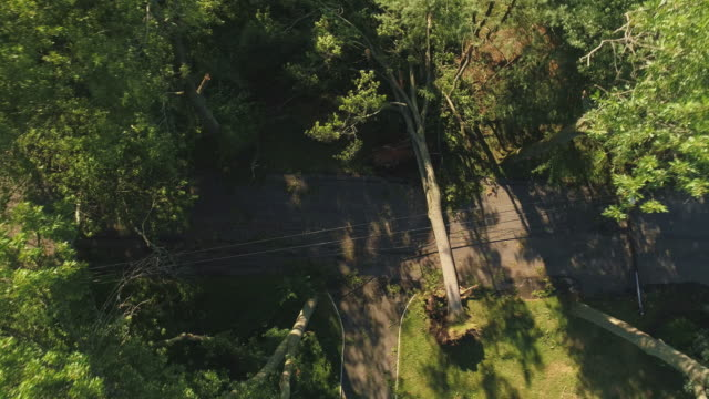 a tree has fallen because of the strong wind and it barricaded the street and destroyed power lines and internet and tv cables in a small town in new jersey after a storm.  aerial video with the fast descending and spinning  camera motion. - albero caduto video stock e b–roll