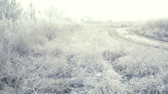 ein baum in frost und schnee auf dem feld in einem frühen frostigen morgen wird von der sonne beleuchtet - schneeflocke sonnenaufgang stock-videos und b-roll-filmmaterial
