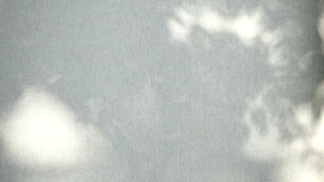 дерево лист тень в ветер бриз движение на белой холщовой ткани - тени стоковые видео и кадры b-roll