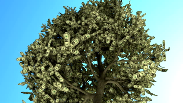 Tree Of Money video