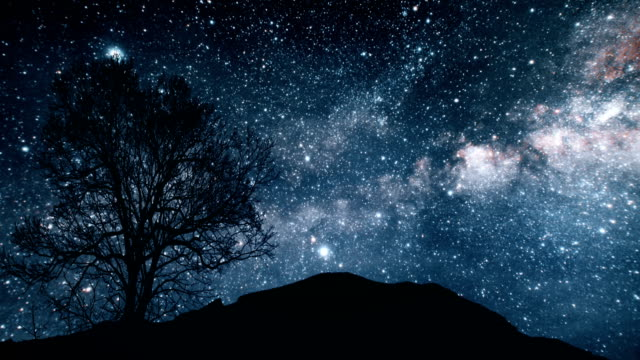 a tree on a hill under a starry sky. elements of this image furnished by nasa - cielo stellato video stock e b–roll