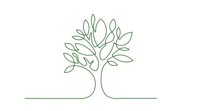 en trädgränsen - growth bildbanksvideor och videomaterial från bakom kulisserna
