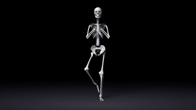 Tree Pose Of Human Skeletal video