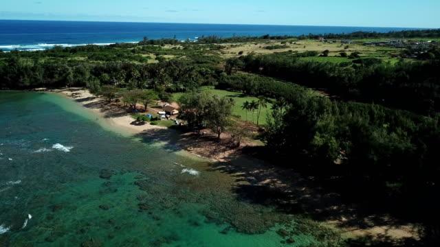 Tree-Lined Coastline on Maui Island by Drone video