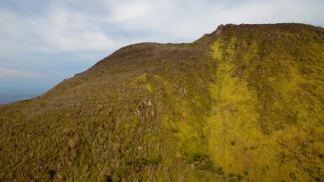 Trees and vegetation on the mountainside. Camiguin island Philippines video