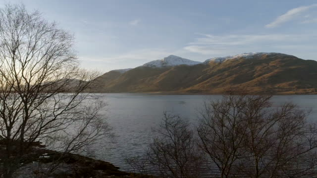 trees at the edge of a scottish loch - fort william video stock e b–roll