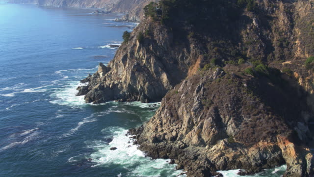 Trees Clinging to Rugged Big Sur Cliffs - Drone Shot video