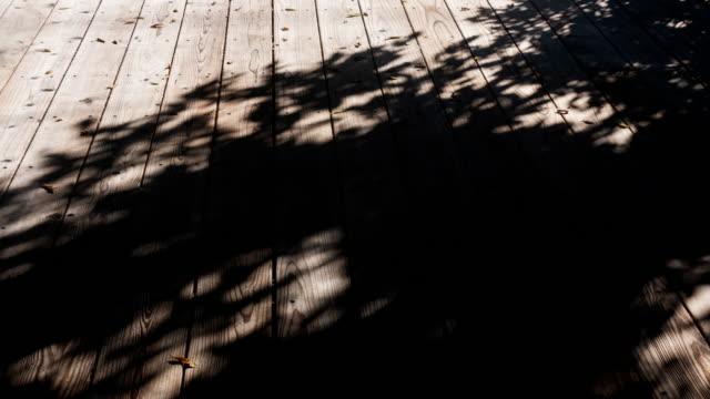 trees shade motion on wooden floor 4k dci - тени стоковые видео и кадры b-roll