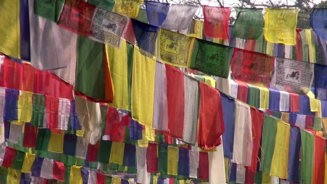 trees with buddhist praying flags. buddha birthplace in lumbini, nepal - stupa stok videoları ve detay görüntü çekimi