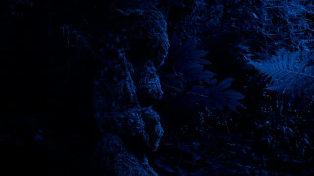 Tribal Head Figure Outdoors At Night