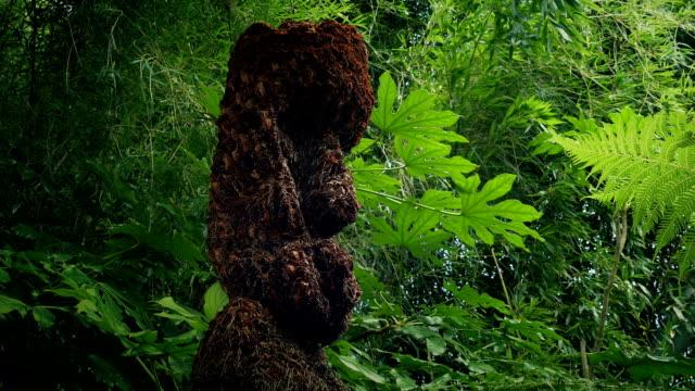 Tribal Head Statue In The Jungle