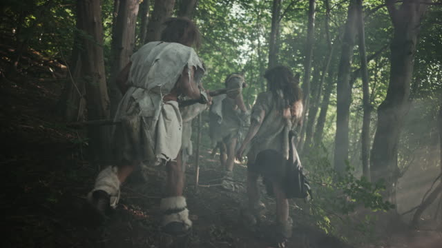tribe of hunter-gatherers wearing animal skin holding stone tipped tools, explore prehistoric forest in a hunt for animal prey. neanderthal family hunting in the jungle or migrating. following view - cacciatore video stock e b–roll