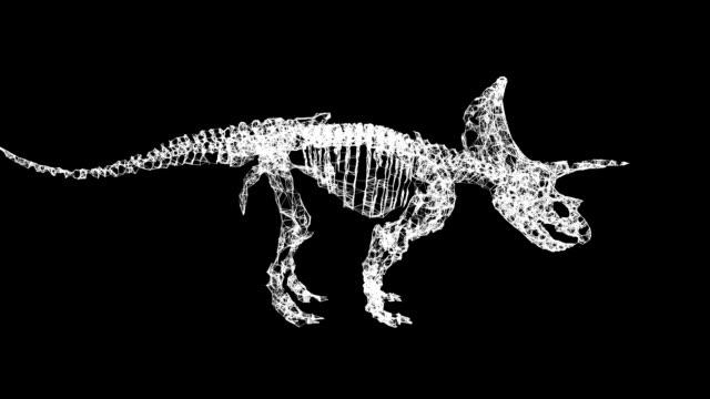 Triceratops Skeletons Plexus Structure. 3d render