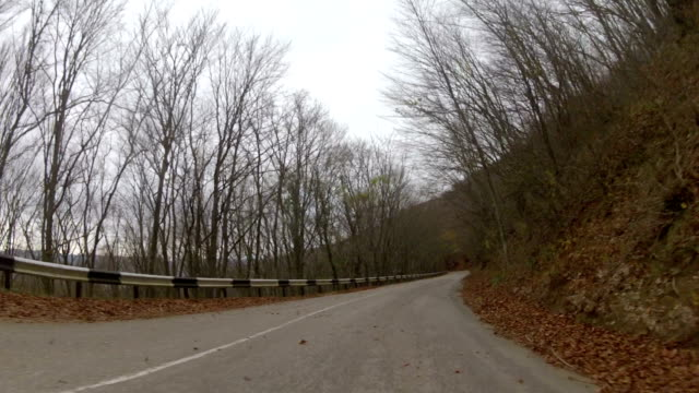 trip through forest in late autumn, GoPro video