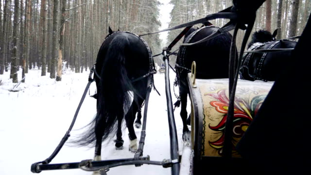 Troika. Russian carriage drawn by a team of three black horses. Slow motion. HD