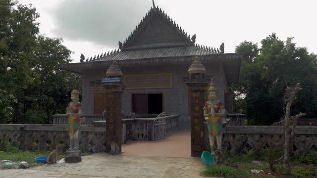 schar affen im gate der pagode - kambodschanische kultur stock-videos und b-roll-filmmaterial