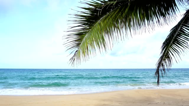 Tropical andaman seascape scenic off beautiful beach in phuket thailand with wave crashing on sandy shore Tropical andaman seascape scenic off beautiful beach in phuket thailand with wave crashing on sandy shore indian ocean stock videos & royalty-free footage