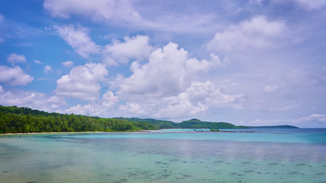 Tropical beach and turquoise sea video