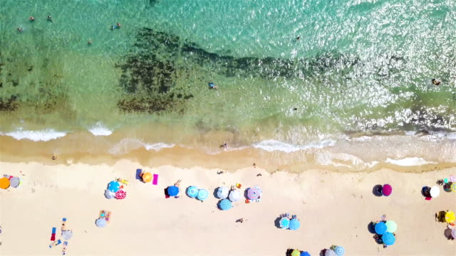 tropical beach full of people - in cima video stock e b–roll
