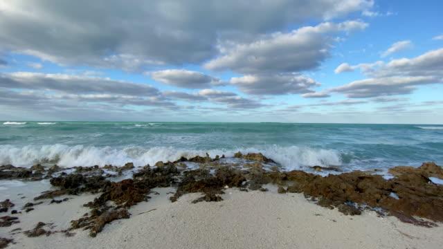 tropiska stranden i karibien - turkos blå bildbanksvideor och videomaterial från bakom kulisserna