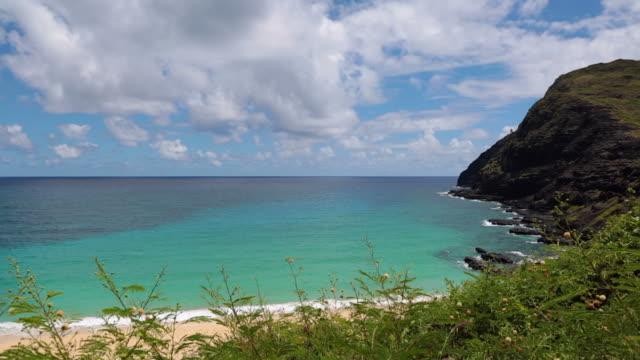 トロピカルなビーチの風景、ハワイ ビデオ