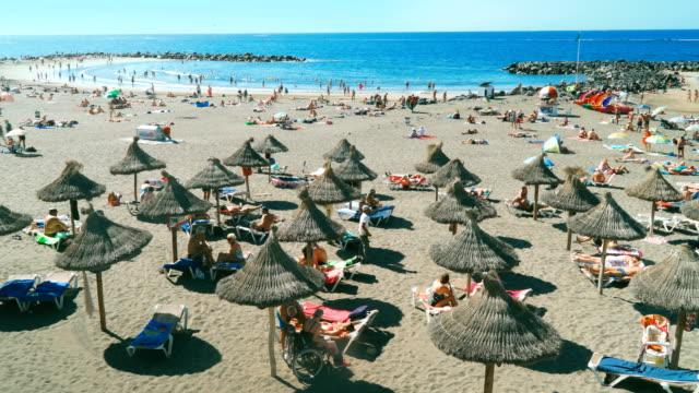 Tropical beach of Atlantic ocean video