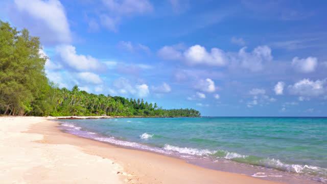 トロピカルビーチでの島 - ハワイ点の映像素材/bロール