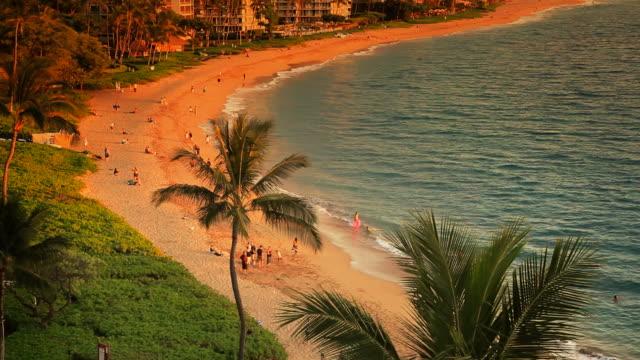 Tropical Beach Resort Paradise at Sunset (HD) video