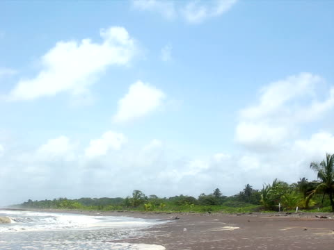 Tropical Beach (PAL) Tropical Beach (PAL) lockdown viewpoint stock videos & royalty-free footage