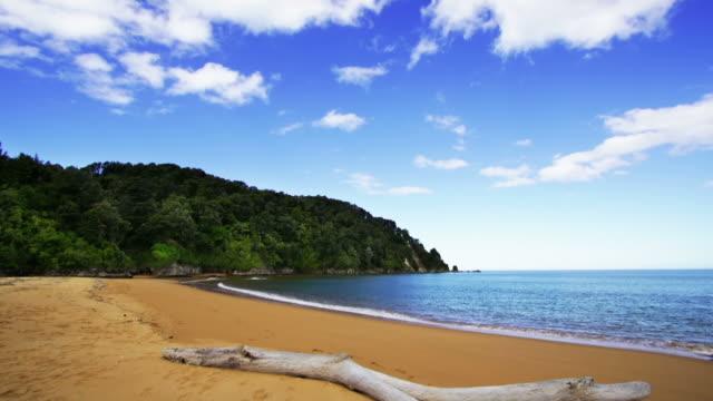 vídeos de stock e filmes b-roll de praia tropical - inclinação para baixo