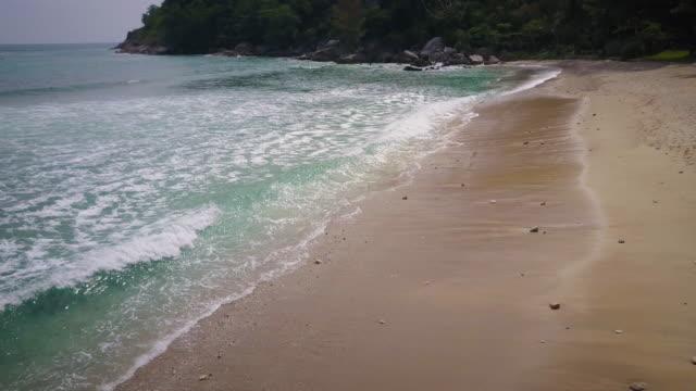 Tropical beach waves aerial video