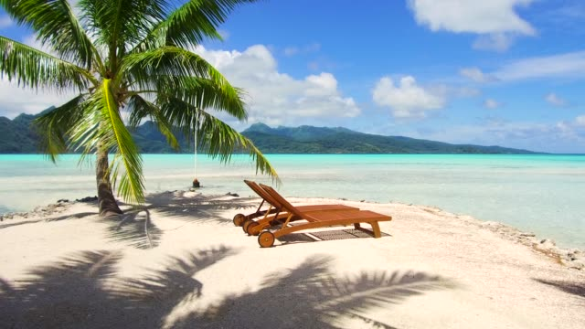 tropical beach with palm tree and sunbeds travel, seascape and nature concept - tropical beach with palm tree and sunbeds in french polynesia lounge chair stock videos & royalty-free footage