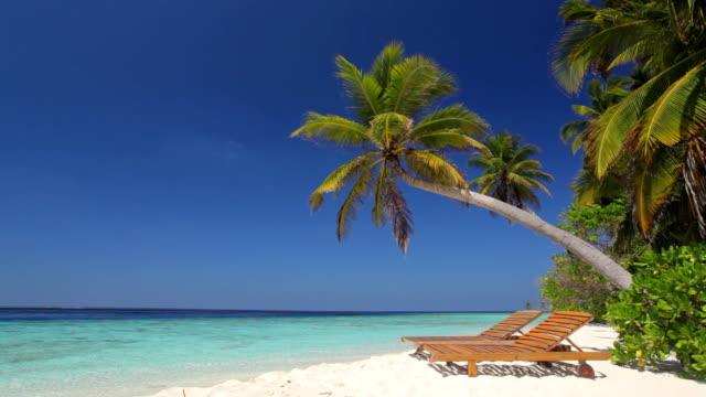 tropical beach with sun chairs video