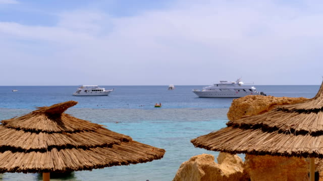 Tropical Beach with Sun Umbrellas on Red Sea near Coral Reef. Egypt
