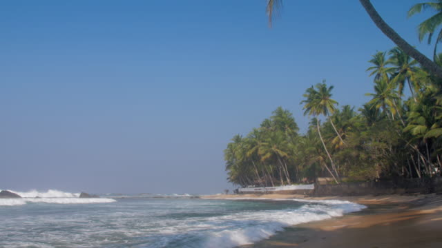 tropical beach with waving ocean near long green palms - длина стоковые видео и кадры b-roll