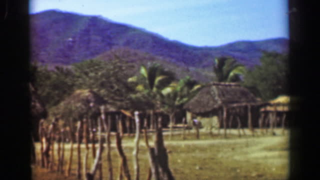 1952: tropical climate farming village straw hut home buildings. - guerrero video stock e b–roll