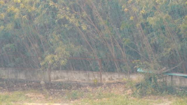 vídeos de stock, filmes e b-roll de um aguaceiro tropical na tailândia. chuva pela parede - relevo