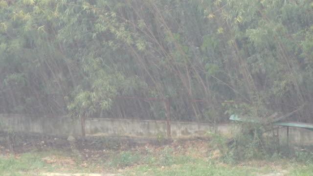 a tropical downpour in thailand. rain by wall - рельефная резьба стоковые видео и кадры b-roll