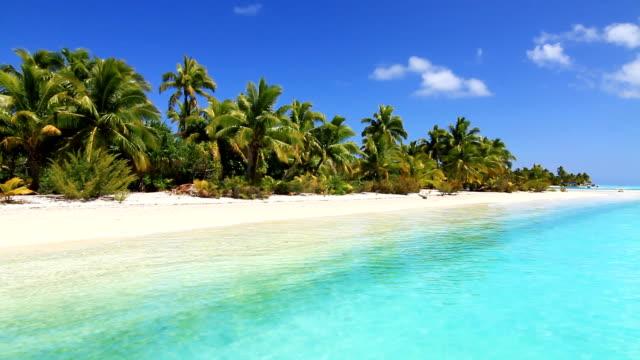 tropical island and palm beach lagoon - idyllisk bildbanksvideor och videomaterial från bakom kulisserna